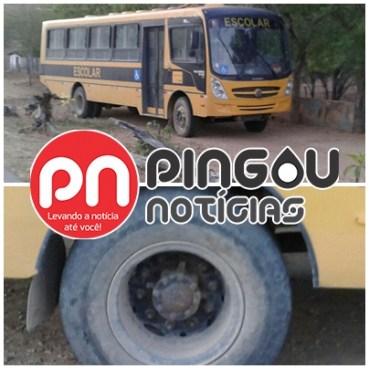 pingou-noticias-gloria-porto-dafolha-sertao-sergipe
