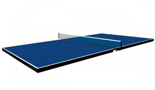 Martin Kilpatrick Table Tennis Conversion Top