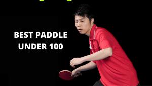 best paddle under 100