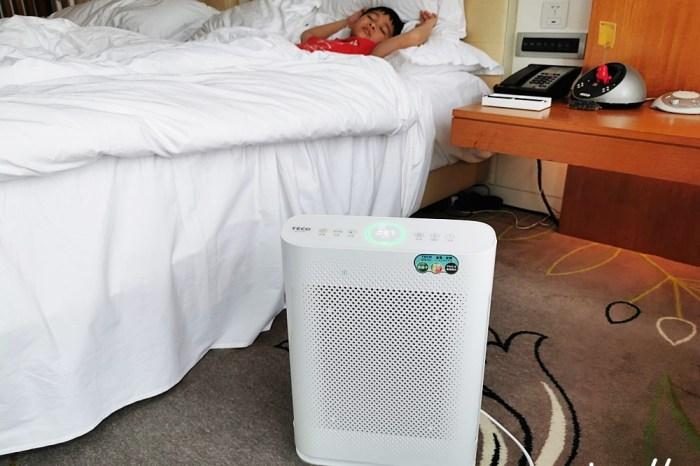 空氣清淨機推薦 TECO東元家電 智慧感應空氣清淨機NN2501BD 乾淨看的見