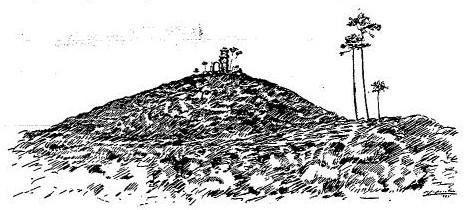 Projeto de Monumento em Honra dos Guardiões do Pinhal