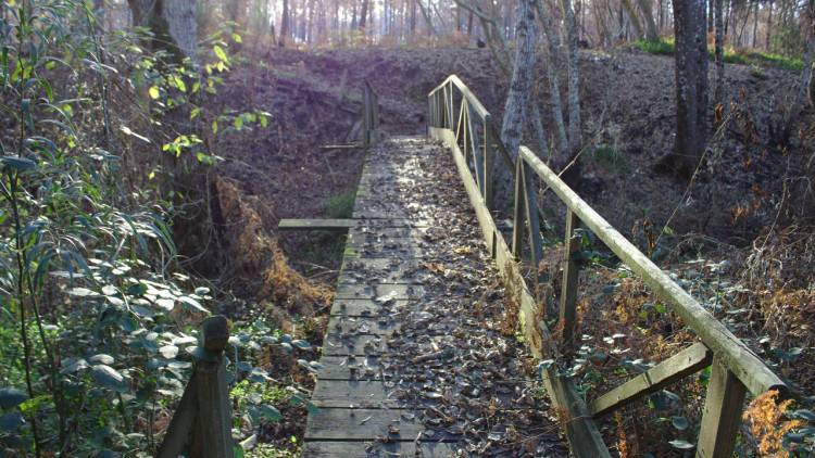 Ponte pedonal do Rio Tinto