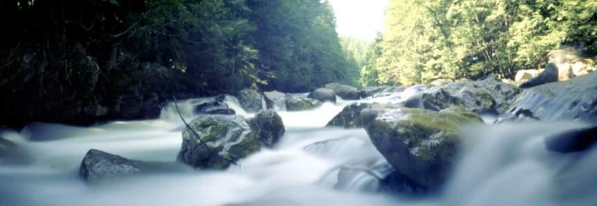 Stream near Mt Baker, WA (c) 2005 Clint O'Connor