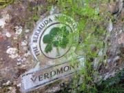 BNT Verdmont