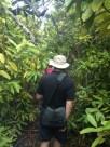 Exploring