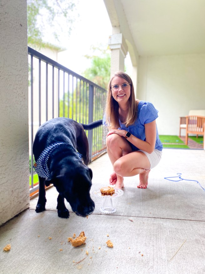 Black lab with dog cake and blonde woman - Pink Bows & Twinkle Toes