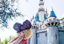 Five Disneyland Treats Under Dollars - Pink Cake Plate