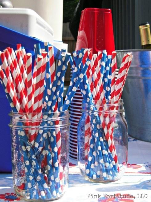 A Patriotic Party by coconutheadsurvivalguide.com