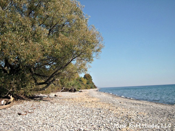 Hidden Secrets on the Shoes of Lake Ontario by coconutheadsurvivalguide.com #canada #campx #oss