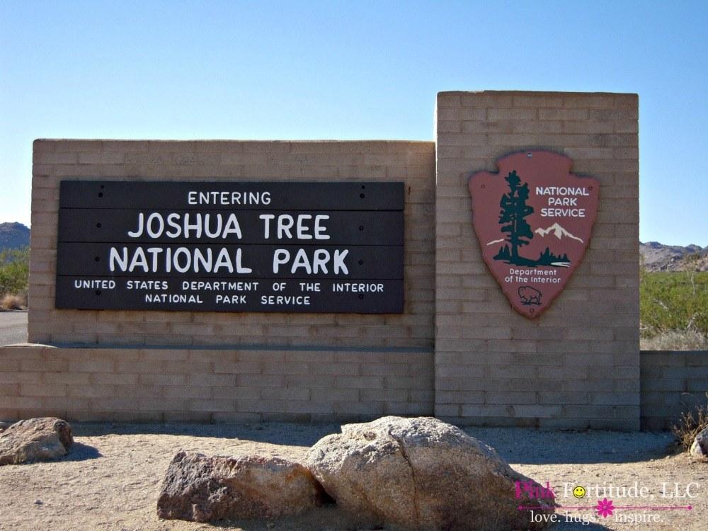 Joshua Tree National Park by coconutheadsurvivalguide.com