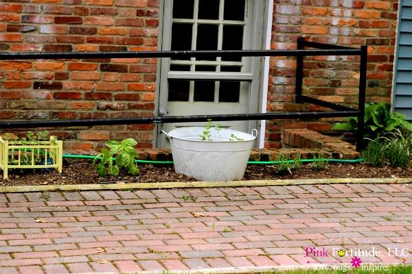 herb garden 7