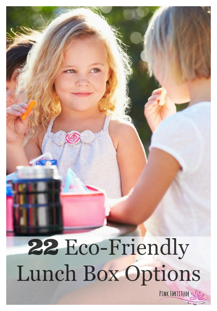 It's back to school time which means it's time to start packing your child's lunch box. But how safe is it? Is it eco-friendly? These are 22 eco-friendly and SAFE ideas for your lunch bags and everything that goes in them. One less thing to worry about with the back to school craziness!
