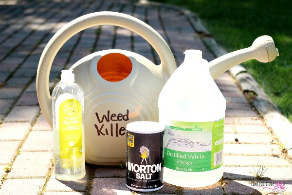 The Best All-Natural Weed Killer DIY