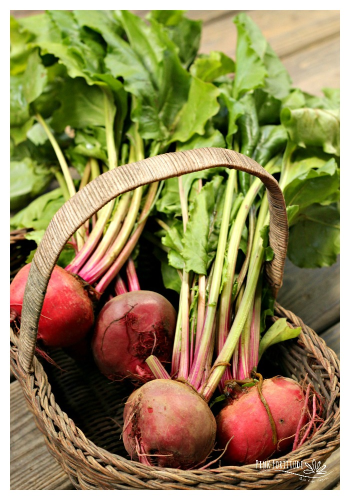 I was never a fan of beets. I grew up in rural Pennsylvania, where pickled eggs and beets were a huge thing, and other than hogmaw, I don't think there was a food that grossed me out more. Ok, maybe liver and onions. But you get the point. So enter adulthood and healthy eating and beets were never on my radar. Until these oven baked beet chips came into my life.