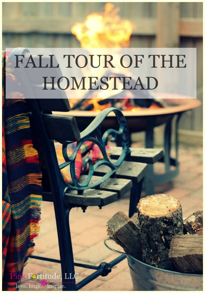 Can you believe it's fall already? Where did the year go? Today I'm taking a break from health and wellness articles to share with you our annual fall tour of our homestead. Grab a cup of coffee or hot coco and sit back and relax and enjoy!