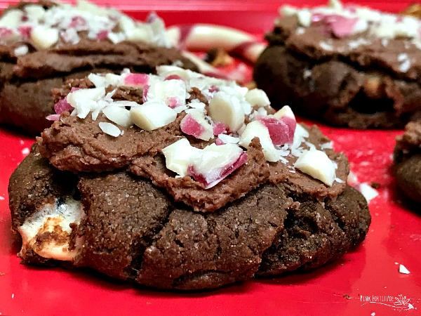 Peppermint Hot Chocolate Cookies Gluten Free And Vegan Pink