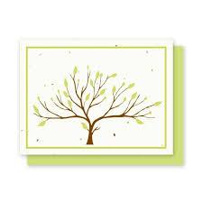 Tree Seed Cards