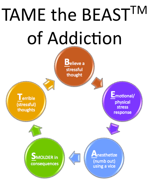TAME the BEAST of Sugar Cravings from Dr. Sam Shay