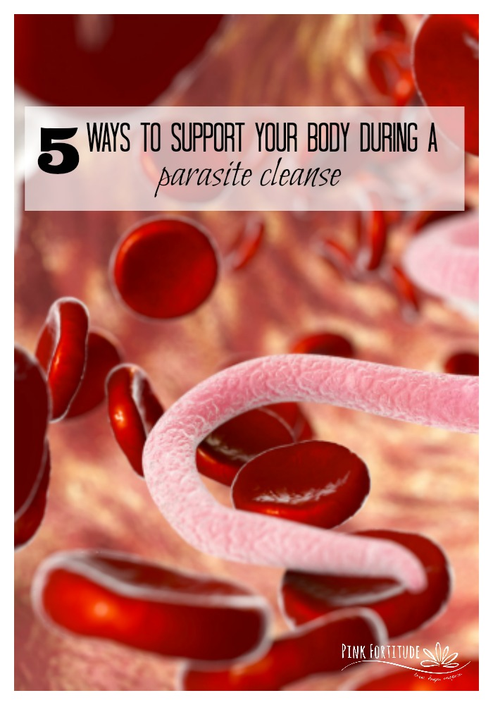 Going through a parasite cleanse is a blister. It makes you feel like aliens have invaded your body. Well... because they kinda did. It's a brutal thing to go through, and trust me, I know from personal experience. But it doesn't have to be. These are the best 5 ways to support your body during a parasite cleanse. And give you the ammunition you need to come out on the other side like a champ. #parasite #detox #pinkfortitude