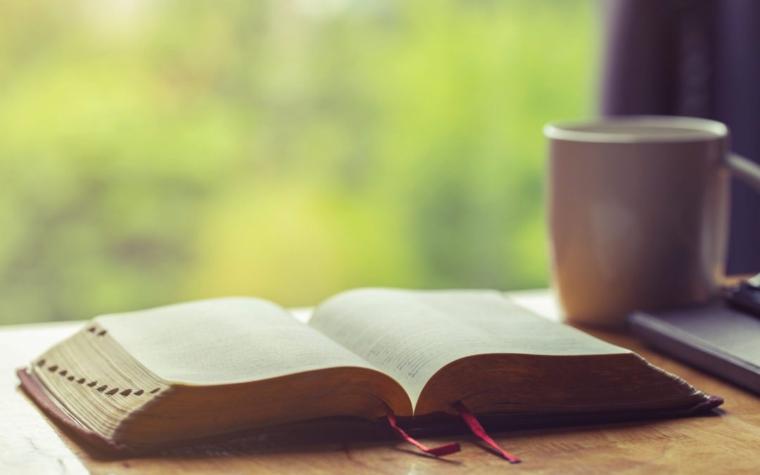 25 Best Bible Verses for the New Year