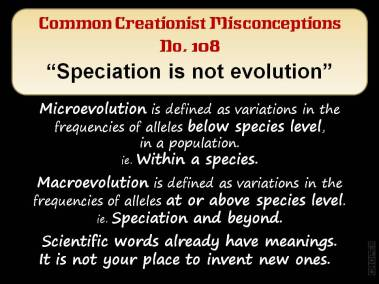 Speciation is not evolution