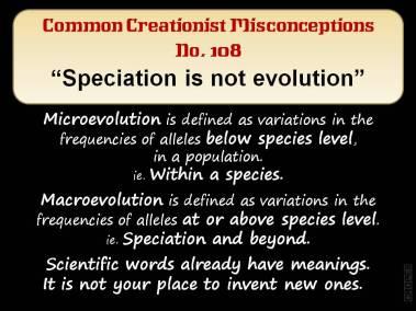 Speciation is not evolution