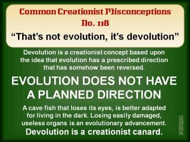That's not evolution, it's devolution.