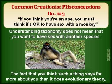 If you think you're an ape, you must think it's OK to have sex with a monkey.