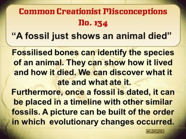 A fossil just shows an animal died.