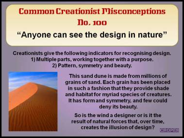 Anyone can see design in nature