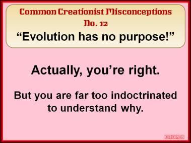 Evolution has no purpose