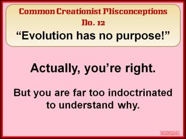 Evolution has no purpose