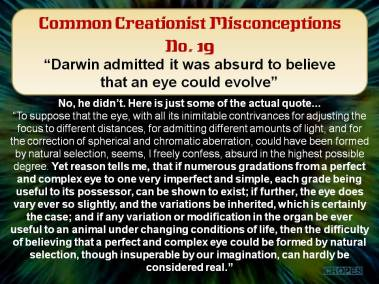 Darwin admitted it was absurd to believe that an eye could evolve.