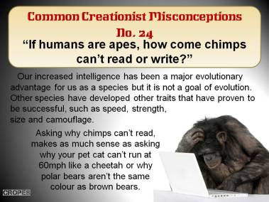 If humans are apes, how come chimps can't read or write.