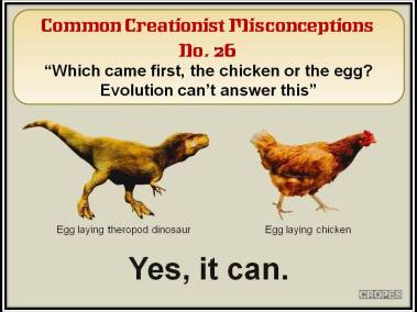 Which came first, the chicken or the egg?