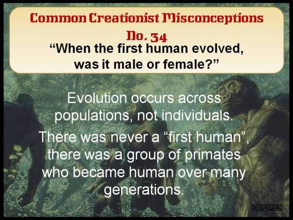When the first human evolved, was it male or female?