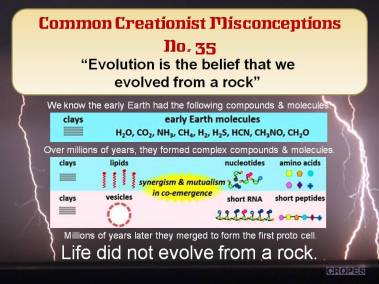 Evolution is the belief that we evolved from a rock.