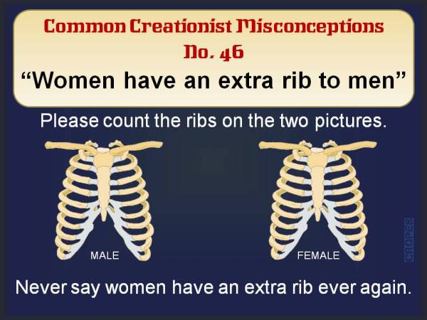 Women have an extra rib to men.