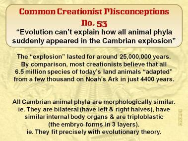 Evolution can't explain how all animal phyla suddenly appeared in the Cambrian explosion.