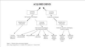 Biological Drives Diagram (behavioral science)   The Pinki