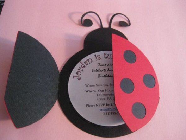 Ladybug Birthday Party Ideas Pink Lover