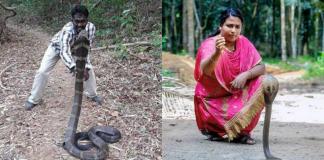 snake handlers in kerala