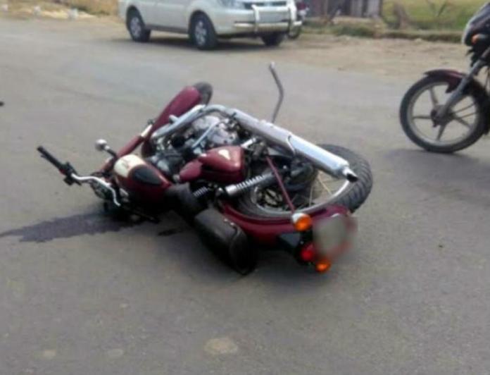 Kerala: Peacock Hits Man On Bike, Bird & Man Dies
