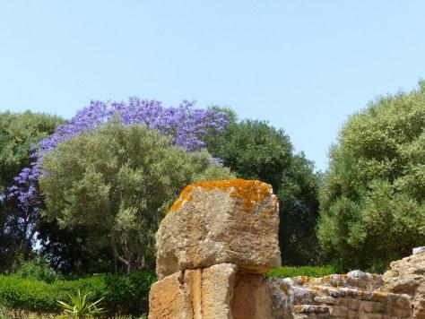 Chellah Necropolis & Sala Colonia