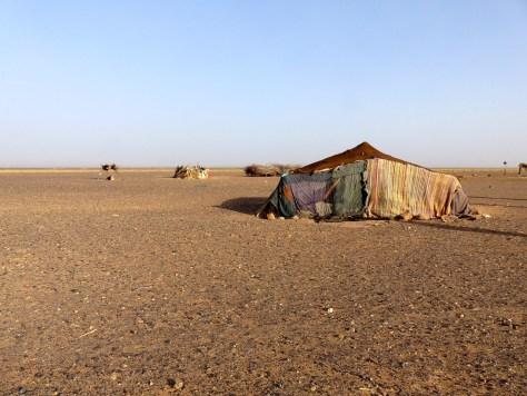 Sahara - Omar & Nomad Family3