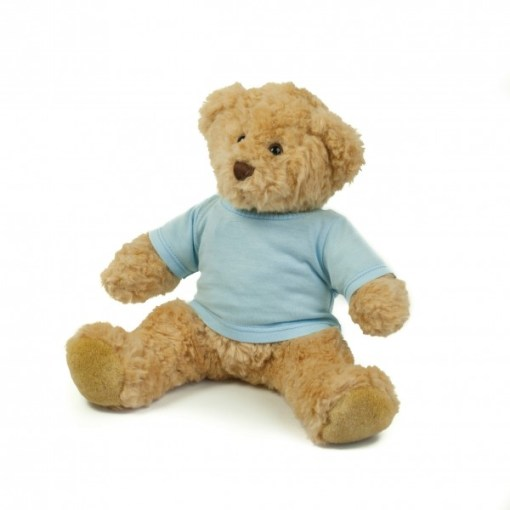 Custom Teddy in various sizes plus printed t-shirt. Prices from £15