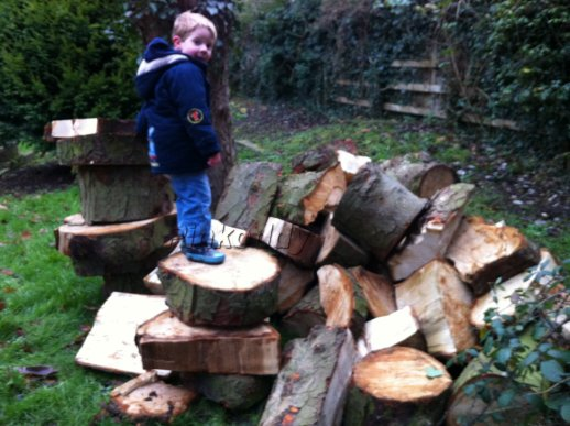 Kids outside – chopped up trees