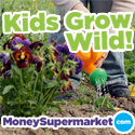 kidsgrowwild_badge