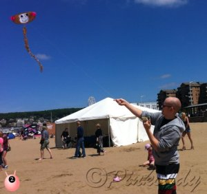 kite_flying_in_the_air