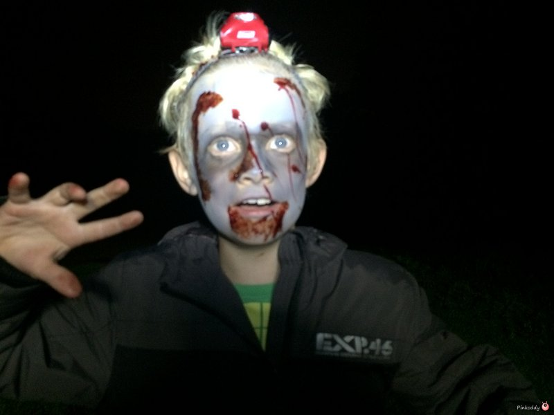 Youth and Family Zombie Survival Event
